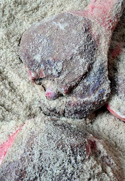 il est mis au sel : exemple de salage par enfouissement